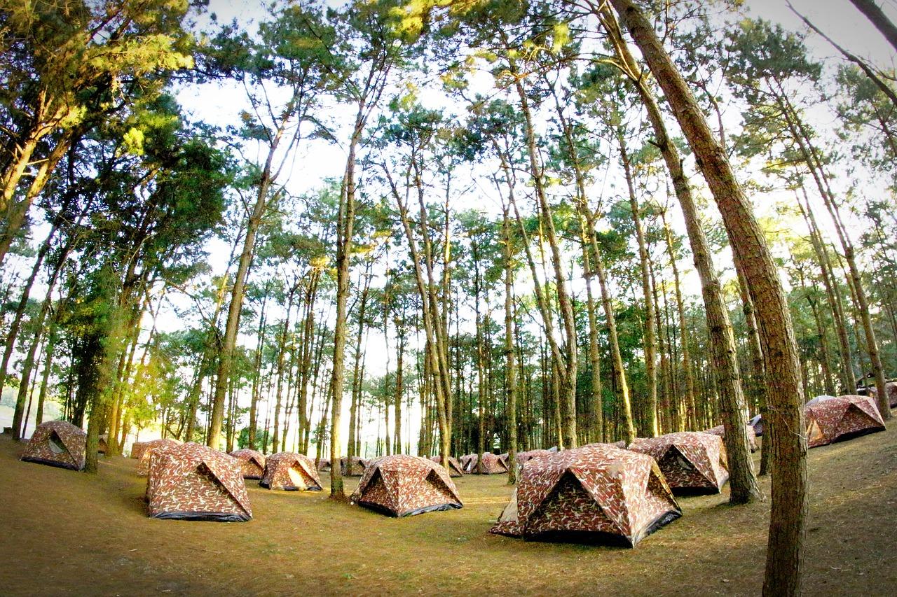 camp-1551246_1280